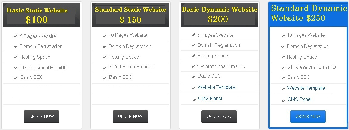 Website Designing Packages in Pakistan